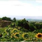 chateau Brametoutre, wedding venue in South of France