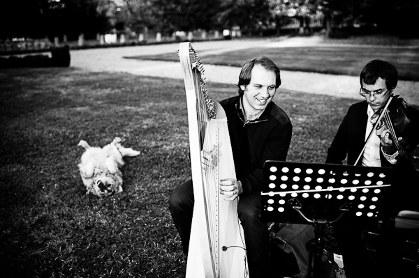 wedding harpist france