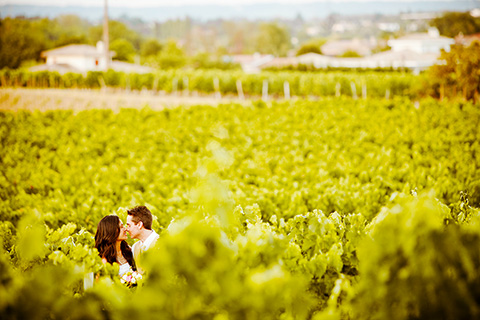 vineyard bordeaux wedding