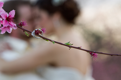orchard wedding photographer