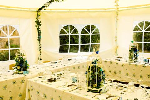 butterfly marquee wedding
