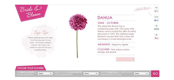 dahlia wedding flowers