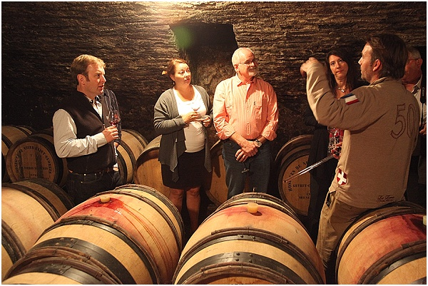 wine cellar tour france