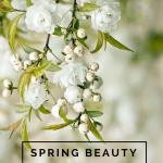 spring beauty must haves with victoria farr