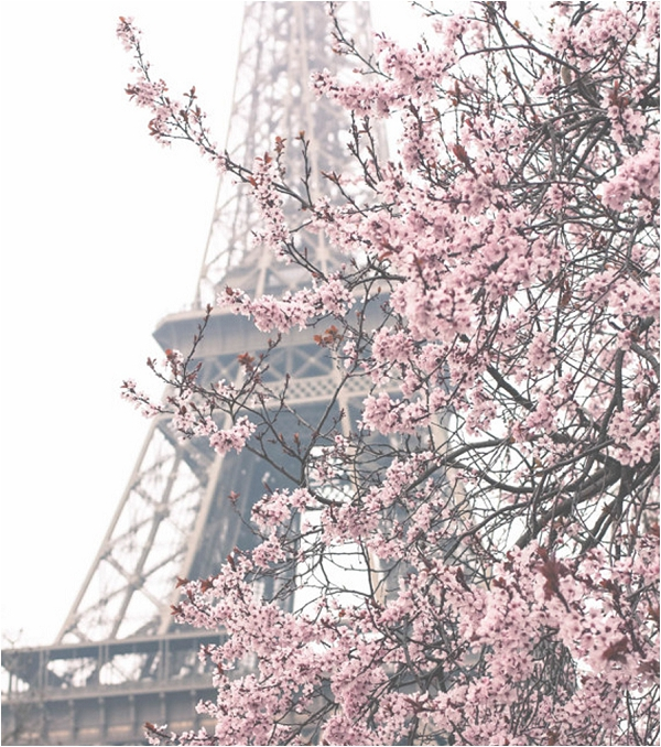 Visiting Paris in Spring