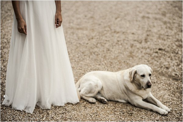 bride and white dog