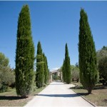 luberon wedding venue