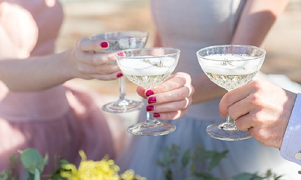 Vintage champagne wedding toast