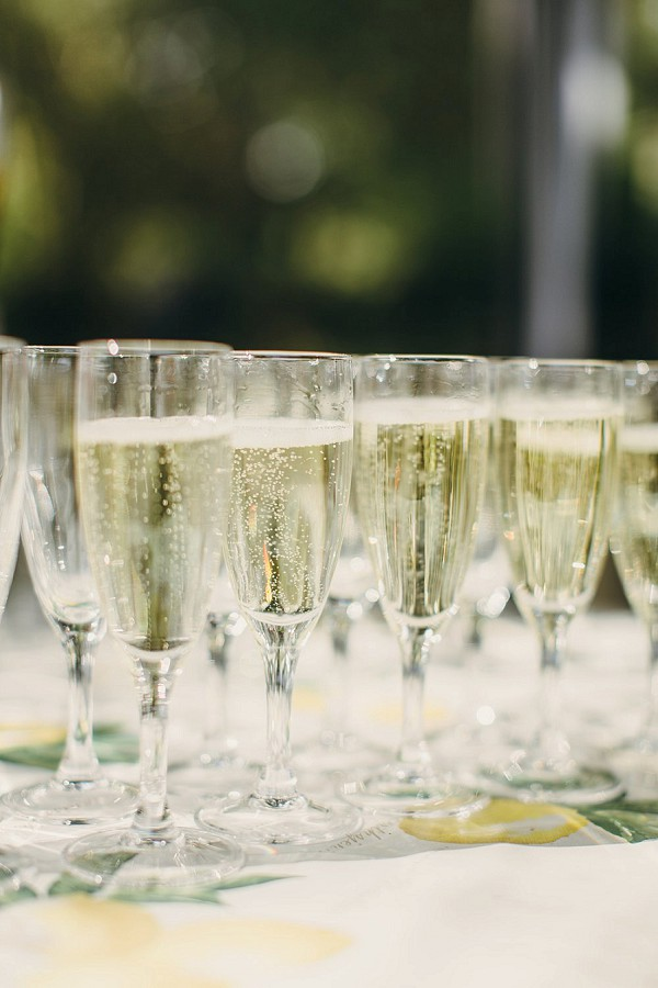 Champagne and canapes rustic wedding