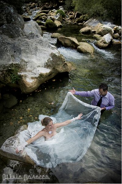 France trash the dress
