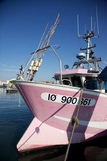 pink fishing boat