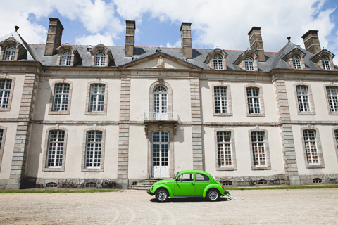 bright green beetle