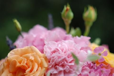 shabby chic flowers