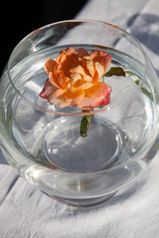 orange wedding flower
