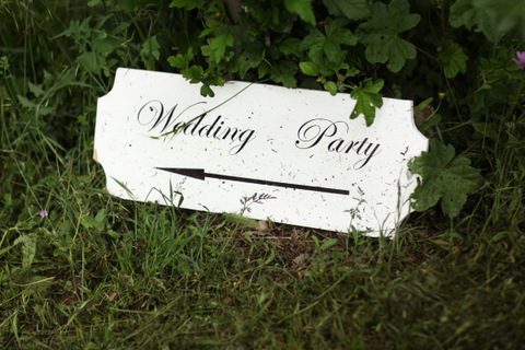 wedding party france