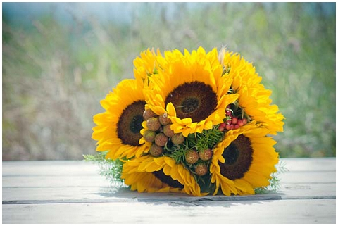 bridal sunflowers