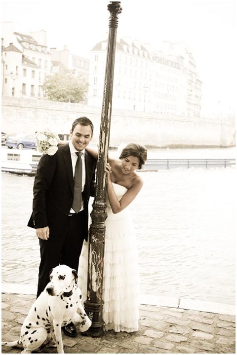 wedding dalmation