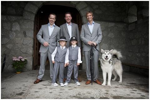 wedding husky