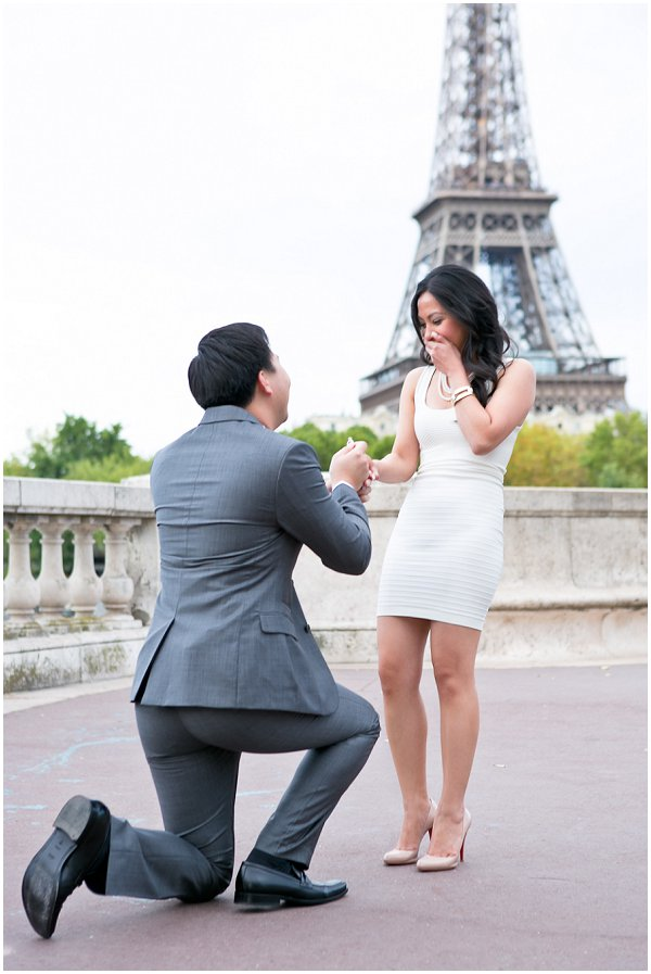 surprise proposal paris