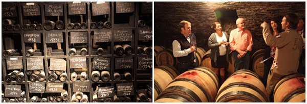 Private wine cellar tour with Bliss Travels