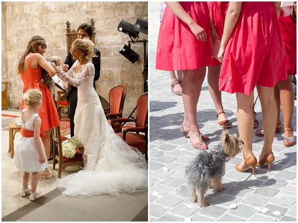 wedding yorkshire terrier