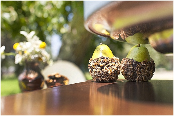 chocolate dipped pears