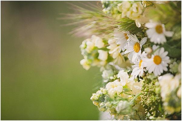 wild daisy bouquet