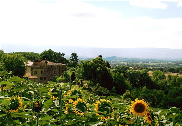 Chateau Brametoure 2