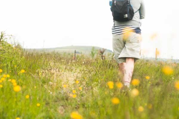 Walking in Auvergne