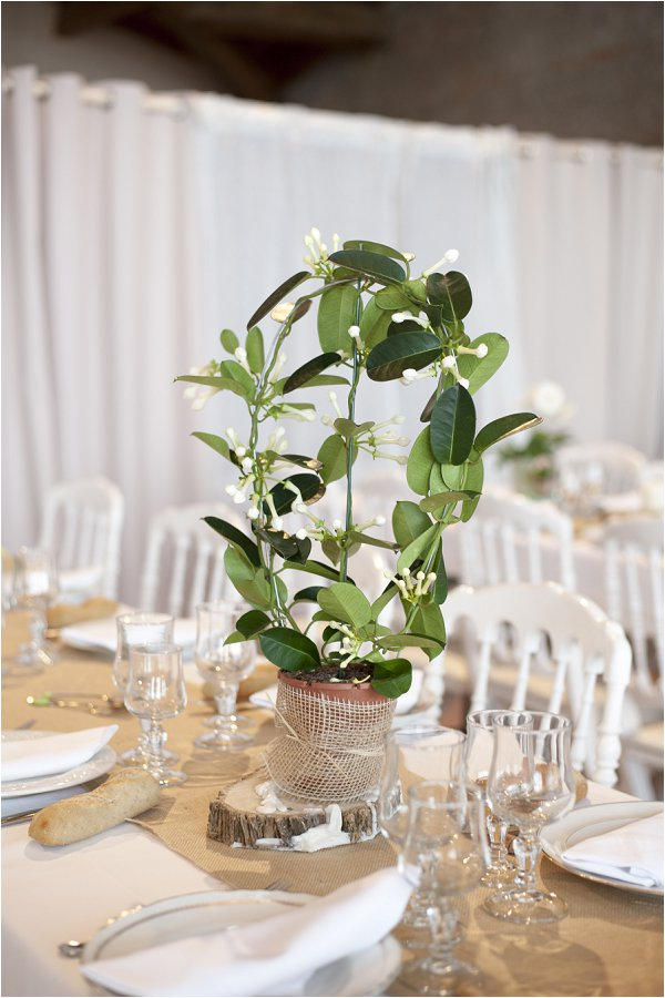 green foliage table flowers