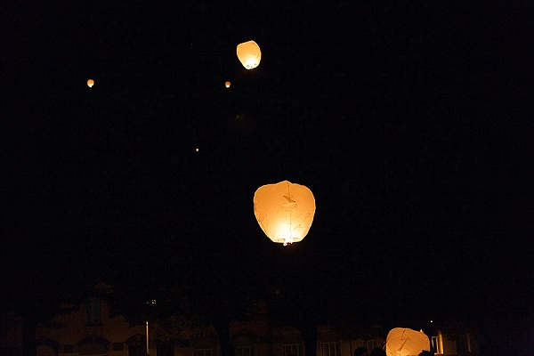 Wedding Chinese lantern