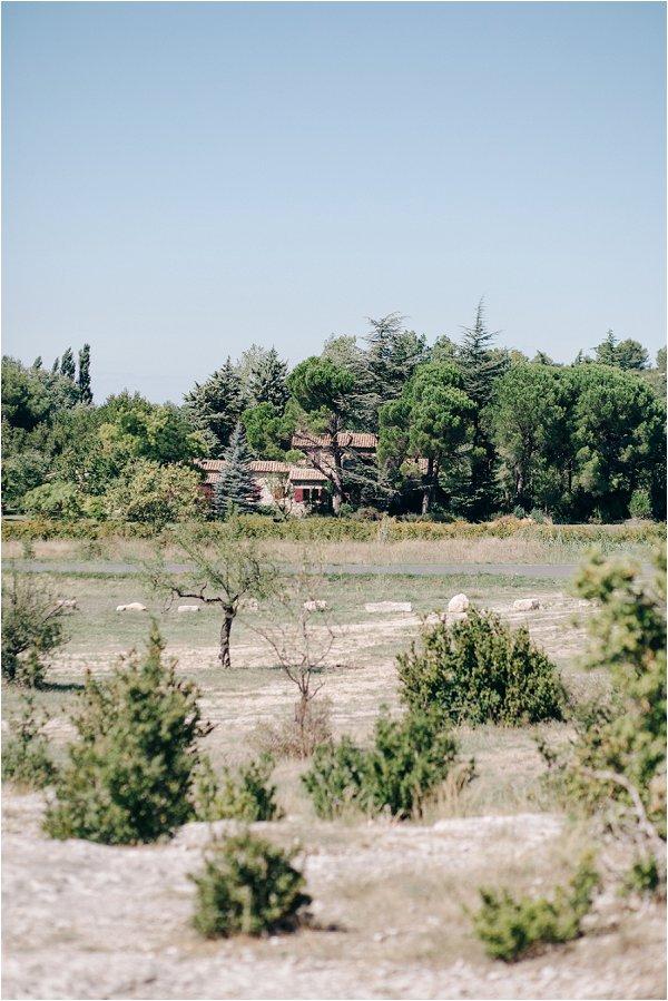 Les Alpilles in Provence M&J