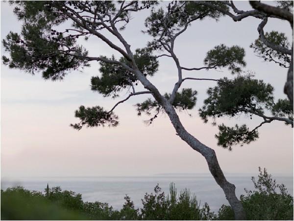 Visit South of France