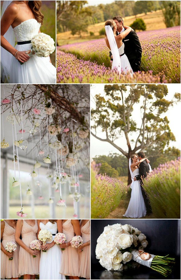 French Inspired Wedding in Lavender Fields Snap Shot