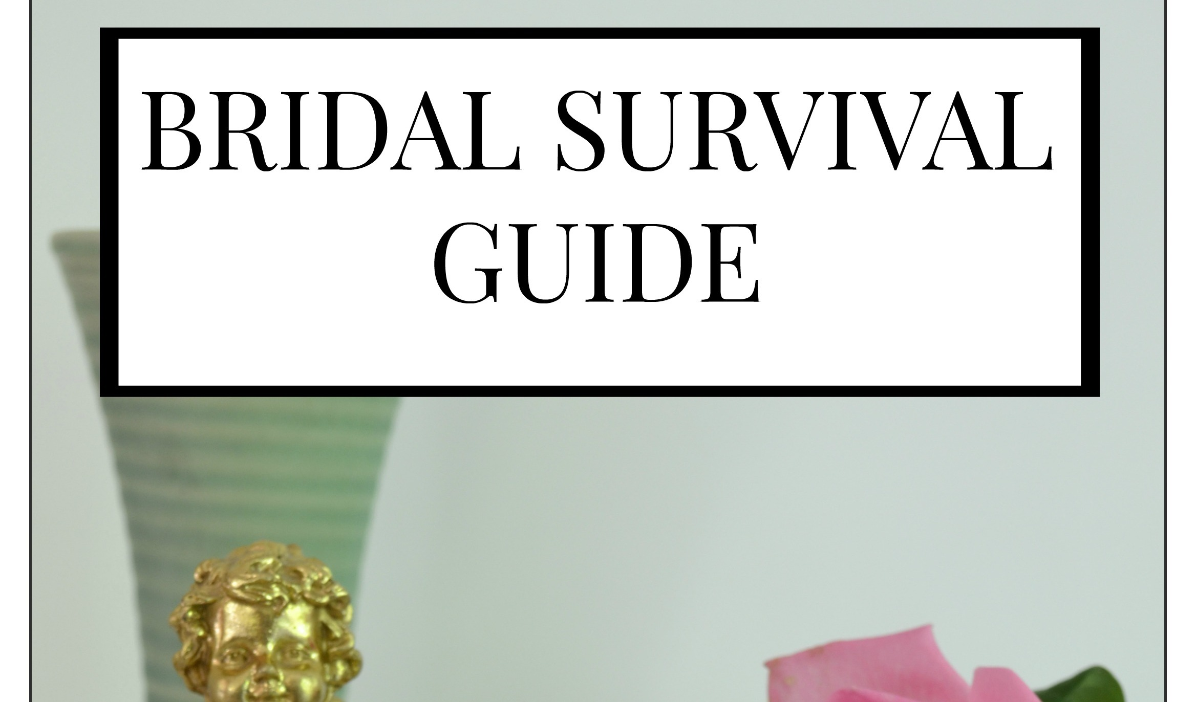 Bridal Survival Guide