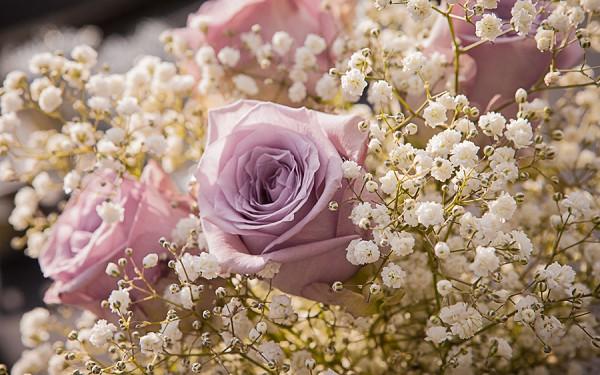 Flora Valentin Flowers