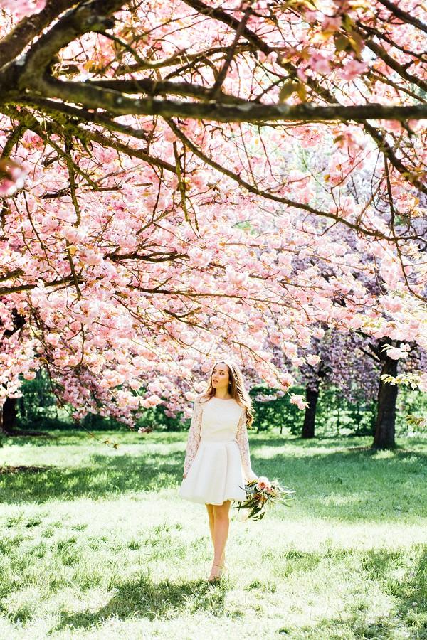Springtime Cherry Blossom Bridal Shoot In Paris