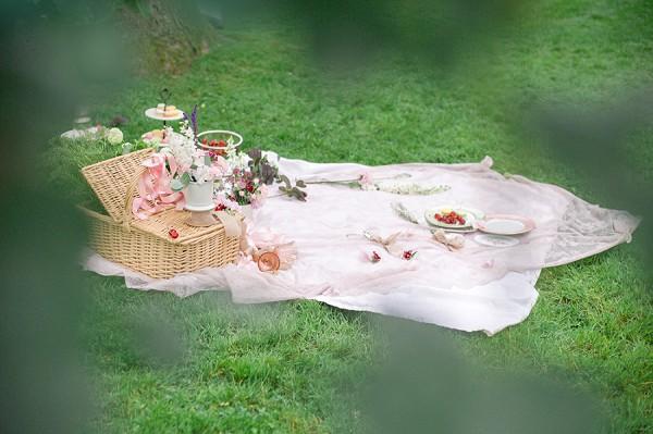 intimate wedding picnic france