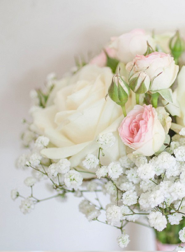 delicate pink roses