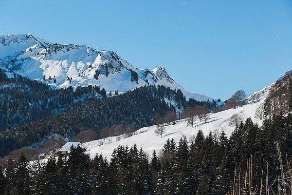 French mountains wedding
