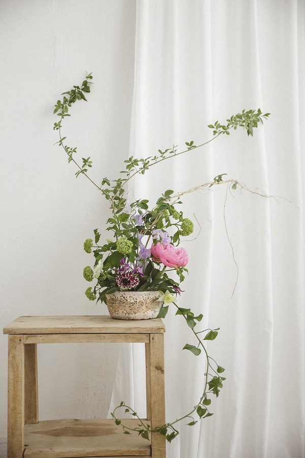 Noobah florist