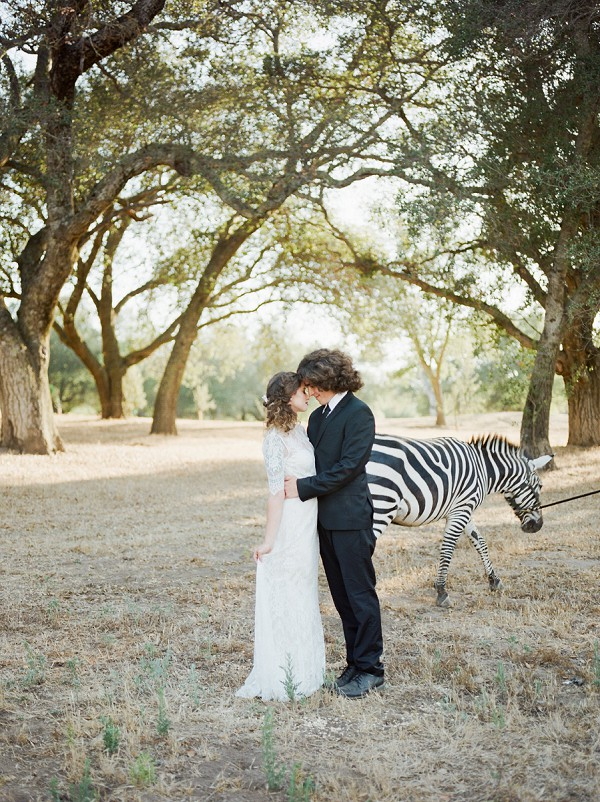 zebra wedding photo