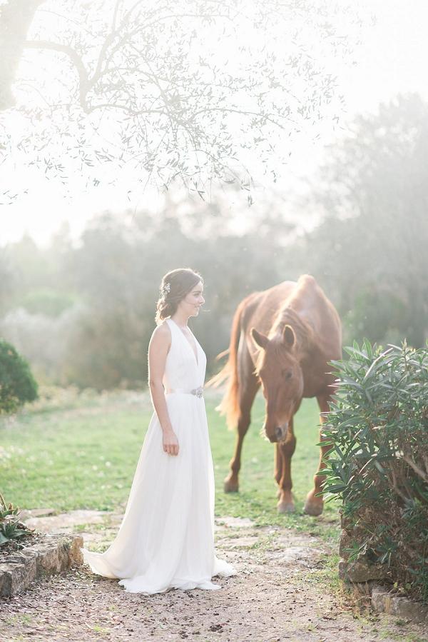 horse wedding photo idea