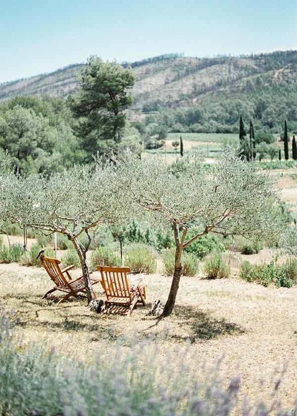 Provence Olive groves wedding