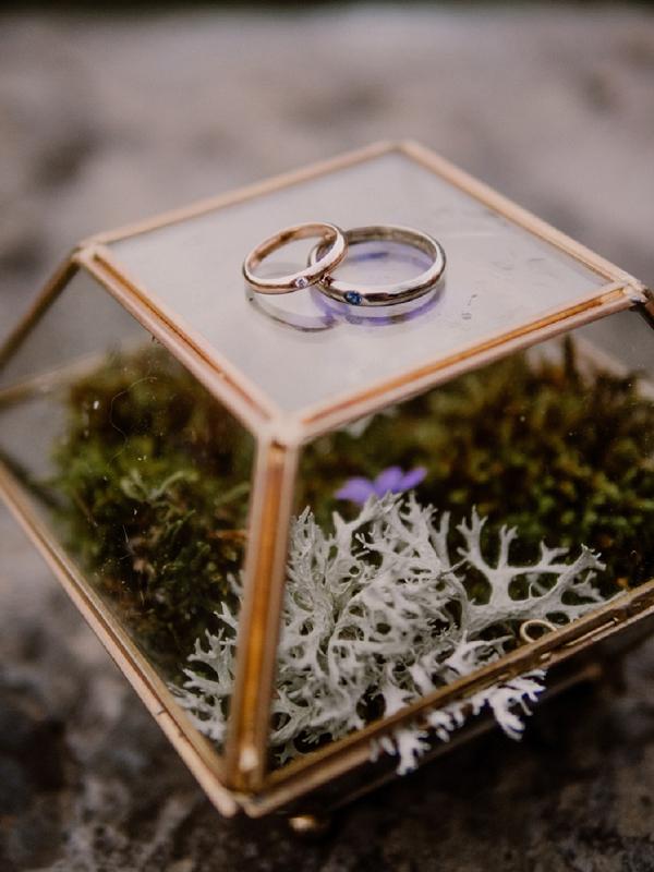 Flore & Zéphyr wedding rings