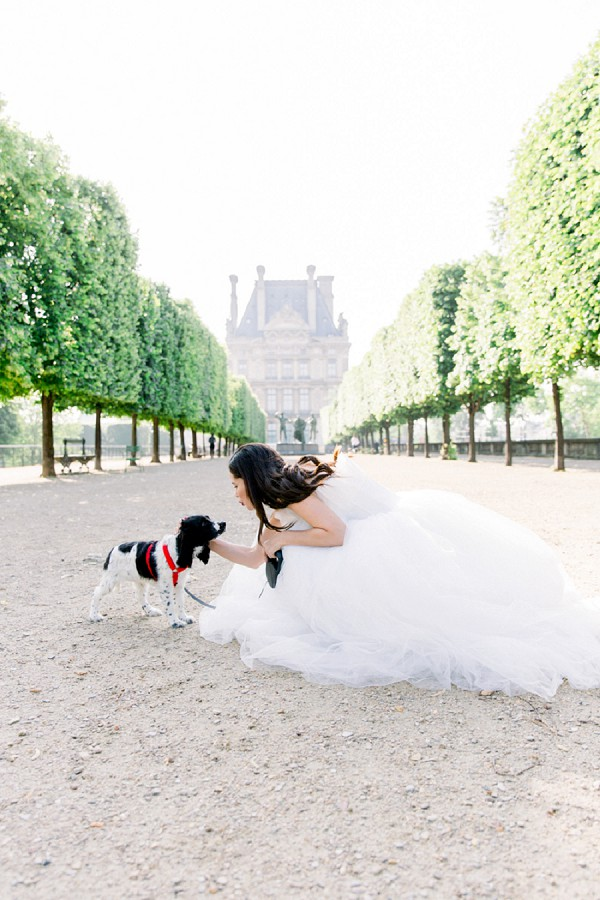 Dog wedding portrait ideas
