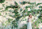 Destination Wedding Provence France 0364