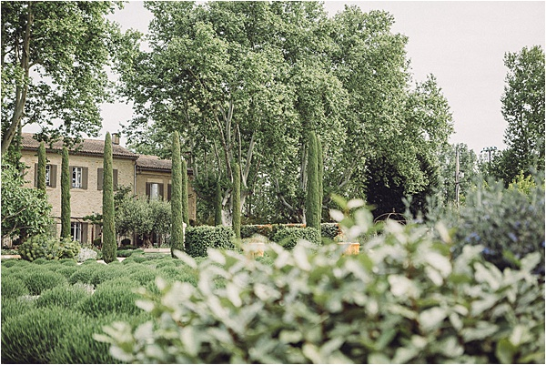 wedding in Provencal Beauty - Pine Forest and Vineyard on French Wedding Style