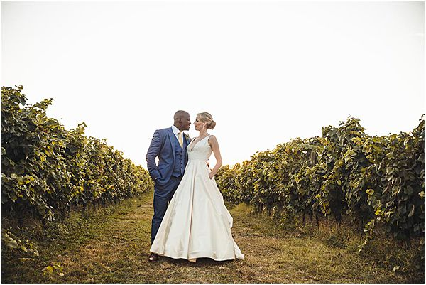Vineyard Venue Background Gascony
