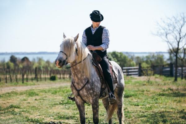 Ranch Groom Horse